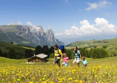 Alpe di Siusi Credit Helmuth Rier